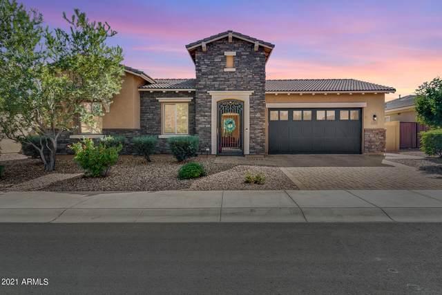 10039 W Jasmine Trail, Peoria, AZ 85383 (MLS #6306588) :: Elite Home Advisors