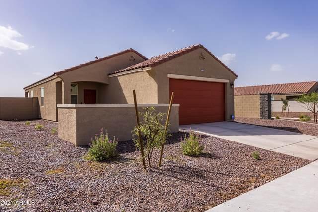 3719 E Henson Street, San Tan Valley, AZ 85140 (MLS #6306613) :: D & R Realty LLC