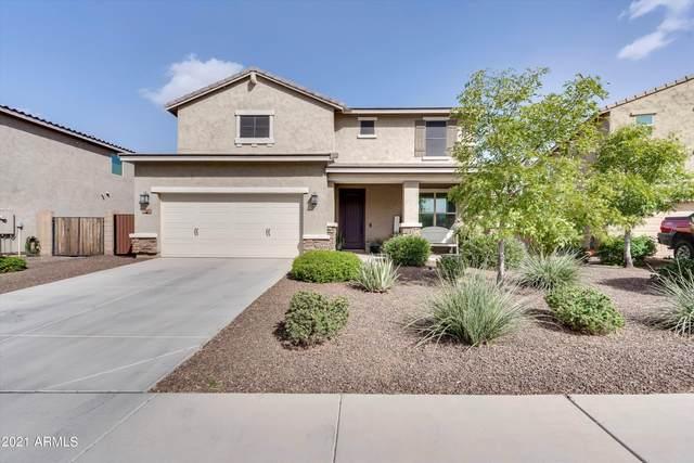 346 E Monza Way, San Tan Valley, AZ 85140 (MLS #6306687) :: D & R Realty LLC