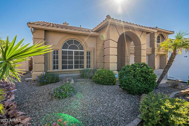 5917 N 133RD Avenue, Litchfield Park, AZ 85340 (#6306749) :: AZ Power Team