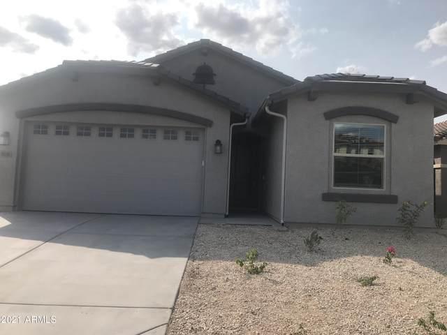 3836 S 64TH Drive, Phoenix, AZ 85043 (MLS #6306762) :: Yost Realty Group at RE/MAX Casa Grande