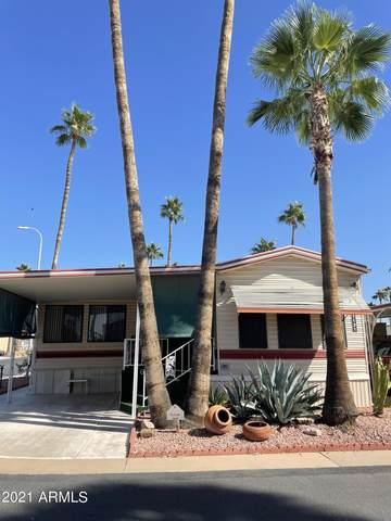 1131 S Shawnee Drive, Apache Junction, AZ 85119 (MLS #6306819) :: Elite Home Advisors