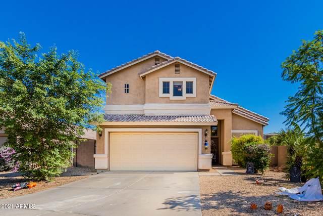3701 N 125TH Drive, Avondale, AZ 85392 (MLS #6306829) :: The Daniel Montez Real Estate Group