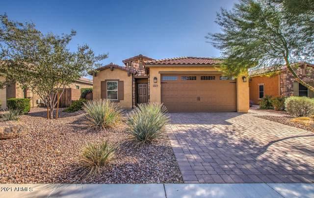2723 E Mews Road, Gilbert, AZ 85298 (MLS #6306838) :: Elite Home Advisors