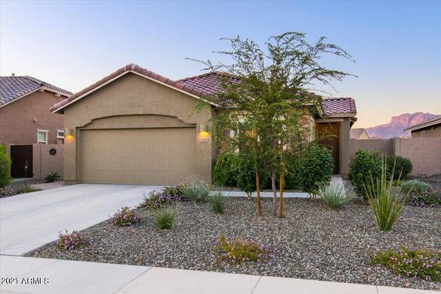 12362 E Massai Point, Gold Canyon, AZ 85118 (MLS #6306850) :: D & R Realty LLC