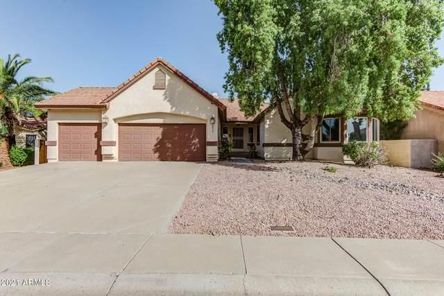 6716 W Piute Avenue, Glendale, AZ 85308 (MLS #6306857) :: Elite Home Advisors