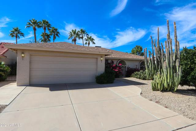 26622 S Sageberry Drive, Sun Lakes, AZ 85248 (MLS #6306876) :: Midland Real Estate Alliance
