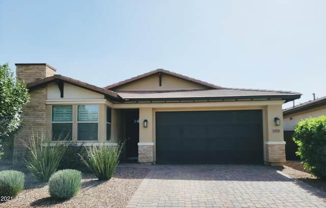 10051 E Theorem Drive, Mesa, AZ 85212 (MLS #6306925) :: Dave Fernandez Team | HomeSmart