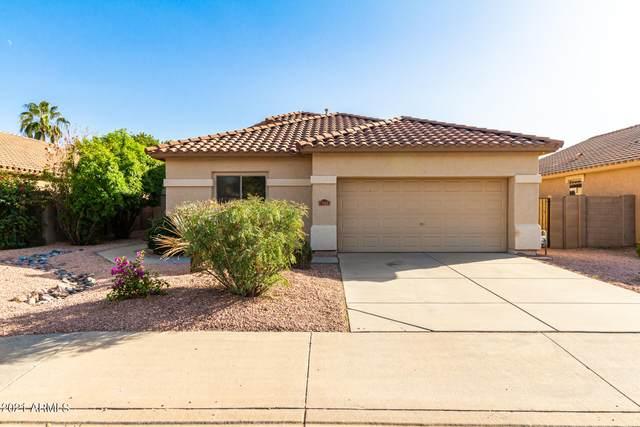 4233 E Torrey Pines Lane, Chandler, AZ 85249 (MLS #6306945) :: The Daniel Montez Real Estate Group
