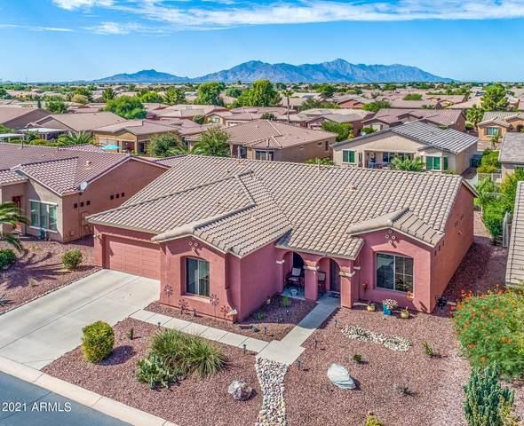 42604 W Sandpiper Drive, Maricopa, AZ 85138 (MLS #6306959) :: Elite Home Advisors