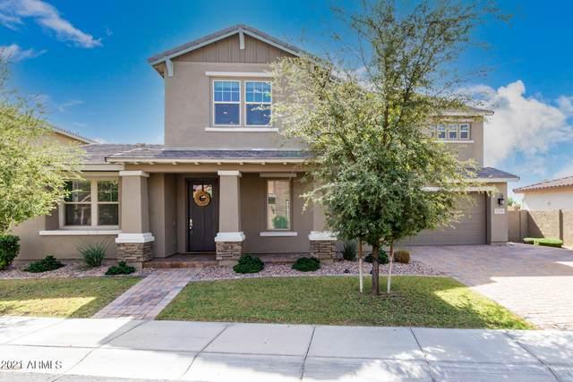 929 W Kaibab Drive, Chandler, AZ 85248 (MLS #6307059) :: Dave Fernandez Team | HomeSmart