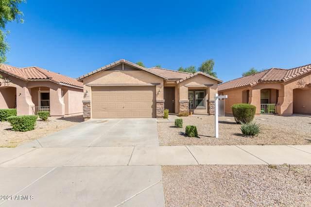 22170 E Via Del Palo, Queen Creek, AZ 85142 (MLS #6307061) :: Yost Realty Group at RE/MAX Casa Grande