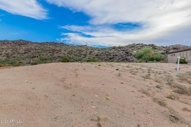 8715 S 24TH Way, Phoenix, AZ 85042 (MLS #6307098) :: Dijkstra & Co.