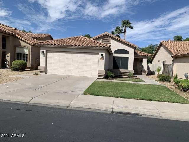 1284 W Kingbird Drive, Chandler, AZ 85286 (MLS #6307160) :: The Daniel Montez Real Estate Group