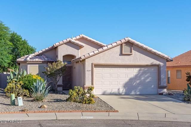 4539 Calle Chico, Sierra Vista, AZ 85635 (MLS #6307194) :: Keller Williams Realty Phoenix