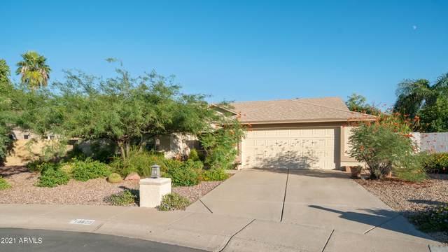 18825 N 40TH Place, Phoenix, AZ 85050 (MLS #6307215) :: The Newman Team