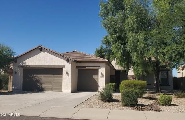 47970 N Navidad Court, Gold Canyon, AZ 85118 (MLS #6307240) :: The Laughton Team