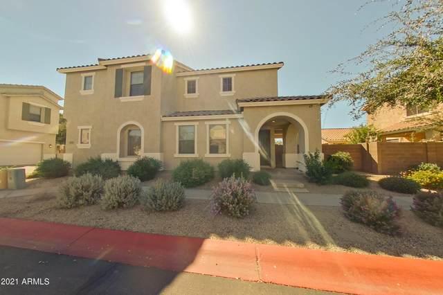 3875 E Flower Street, Gilbert, AZ 85298 (MLS #6307246) :: Yost Realty Group at RE/MAX Casa Grande