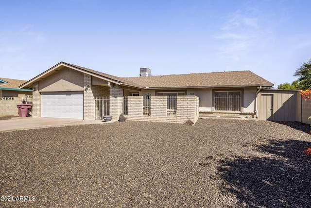 3613 N 87TH Street, Scottsdale, AZ 85251 (MLS #6307291) :: Zolin Group