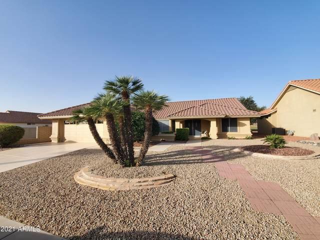20602 N 142ND Avenue, Sun City West, AZ 85375 (MLS #6307309) :: Long Realty West Valley