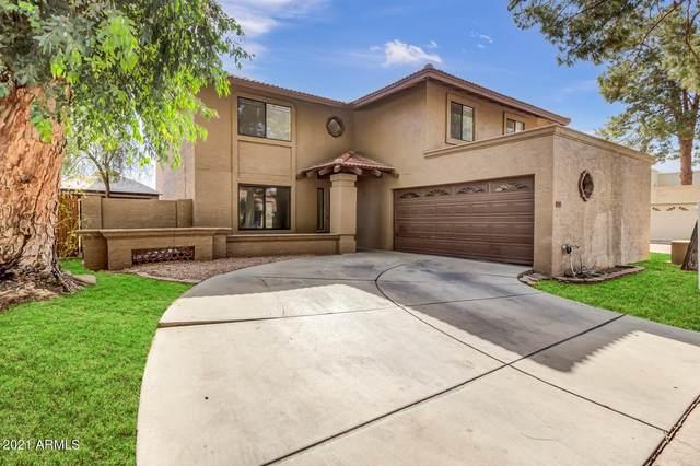 241 E Tremaine Avenue, Gilbert, AZ 85234 (MLS #6307315) :: Zolin Group