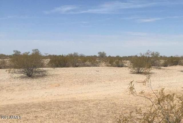 18214 W Skinner Road, Surprise, AZ 85387 (MLS #6307325) :: The Daniel Montez Real Estate Group