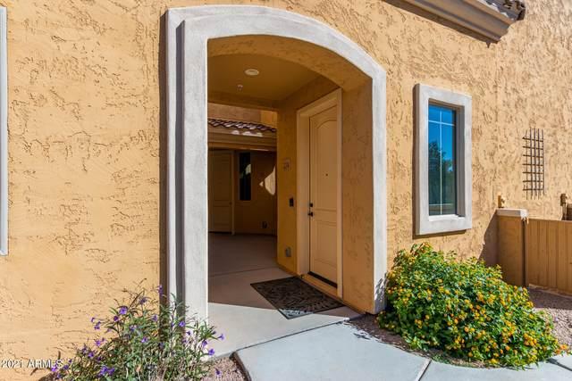 900 S Canal Drive #224, Chandler, AZ 85225 (MLS #6307402) :: Zolin Group