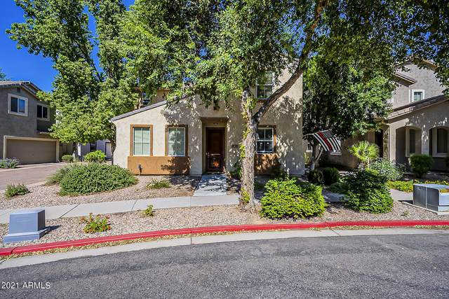 10112 E Isleta Avenue, Mesa, AZ 85209 (MLS #6307446) :: Yost Realty Group at RE/MAX Casa Grande