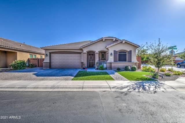 1107 W Beech Tree Avenue, Queen Creek, AZ 85140 (MLS #6307452) :: Klaus Team Real Estate Solutions
