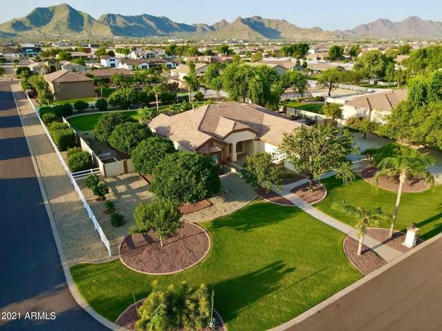 21283 E Excelsior Avenue E, Queen Creek, AZ 85142 (MLS #6307493) :: Team Faber