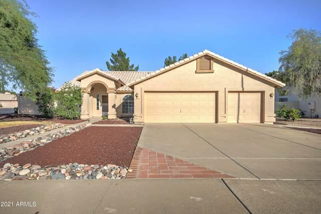 2155 N Almond Avenue, Mesa, AZ 85213 (MLS #6307494) :: The Laughton Team