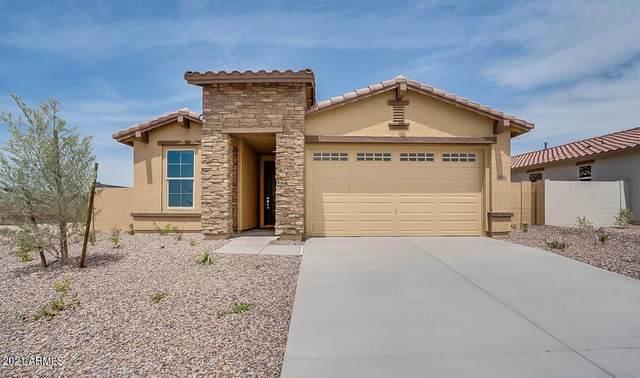 11562 W Lone Tree Trail, Peoria, AZ 85383 (#6307550) :: AZ Power Team