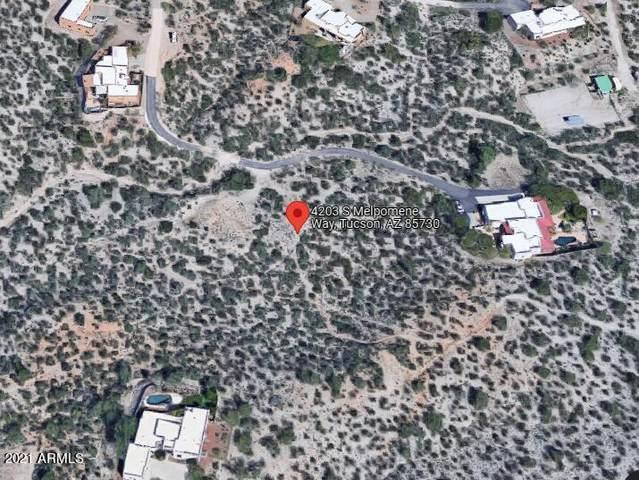 4203 S Melpomene Way, Tucson, AZ 85730 (MLS #6307589) :: The Copa Team | The Maricopa Real Estate Company
