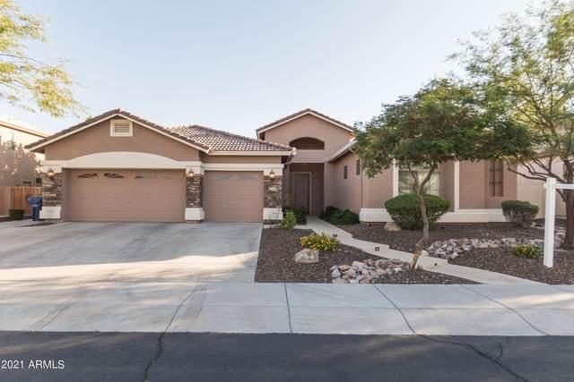 2609 W Mcneil Street, Phoenix, AZ 85041 (MLS #6307591) :: Yost Realty Group at RE/MAX Casa Grande