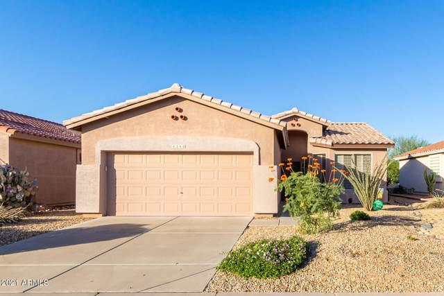 4344 E Strawberry Drive, Gilbert, AZ 85298 (MLS #6307612) :: Zolin Group