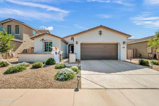 9739 E Torino Avenue, Mesa, AZ 85212 (#6307646) :: AZ Power Team