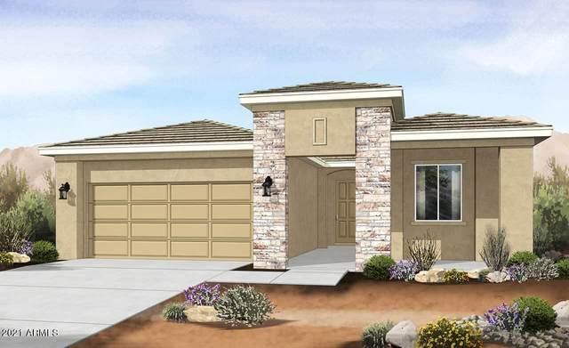 11759 S Wier Avenue, Avondale, AZ 85323 (MLS #6307659) :: Elite Home Advisors
