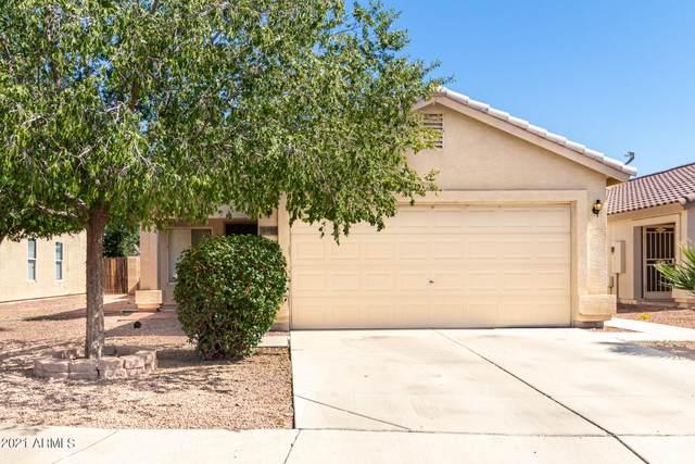 12609 N El Frio Street, El Mirage, AZ 85335 (MLS #6307696) :: Yost Realty Group at RE/MAX Casa Grande