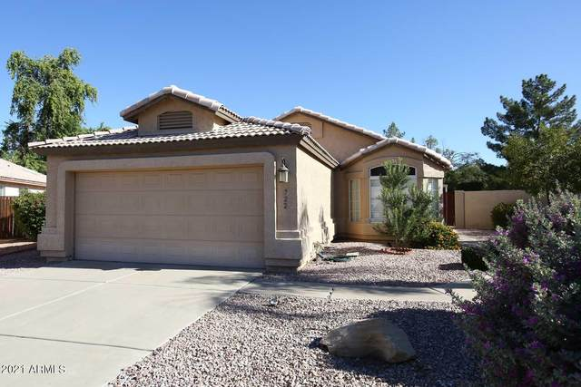 722 W Gail Court, Gilbert, AZ 85233 (MLS #6307697) :: Klaus Team Real Estate Solutions