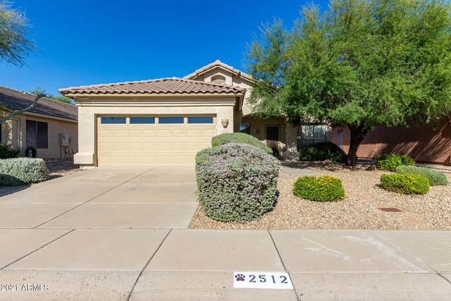 2512 E Paraiso Drive, Phoenix, AZ 85024 (MLS #6307726) :: Synergy Real Estate Partners