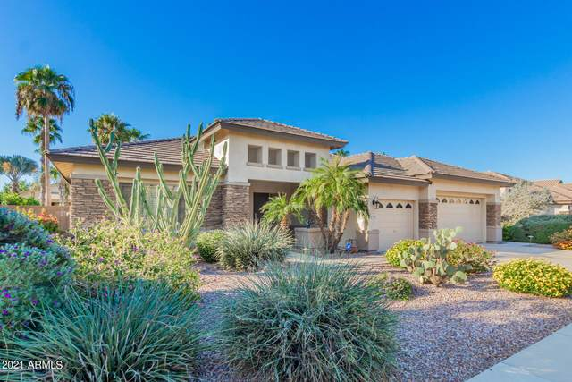 12809 W Estero Lane, Litchfield Park, AZ 85340 (MLS #6307730) :: The Bole Group | eXp Realty