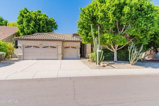 20922 N 55TH Avenue, Glendale, AZ 85308 (#6307735) :: AZ Power Team