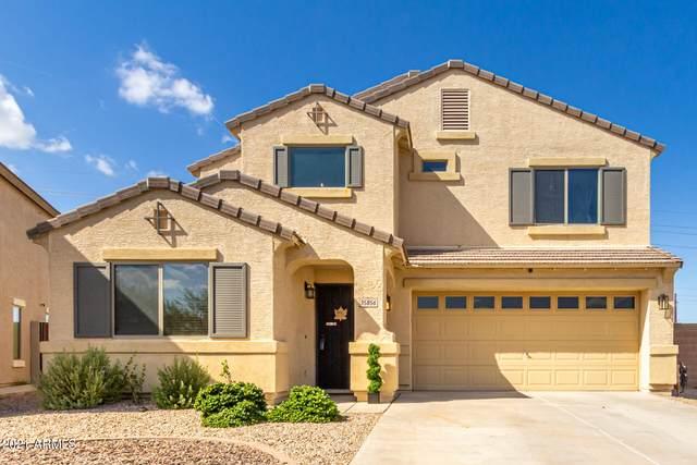 35856 N Murray Grey Drive, San Tan Valley, AZ 85143 (MLS #6307750) :: Arizona Home Group