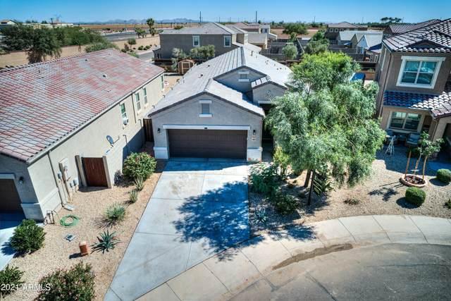 41827 W Chatham Place, Maricopa, AZ 85138 (MLS #6307759) :: Zolin Group
