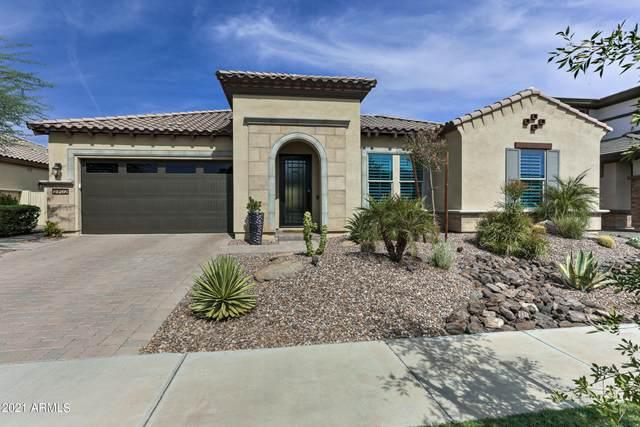 2702 E Indigo Place, Chandler, AZ 85286 (MLS #6307768) :: Elite Home Advisors