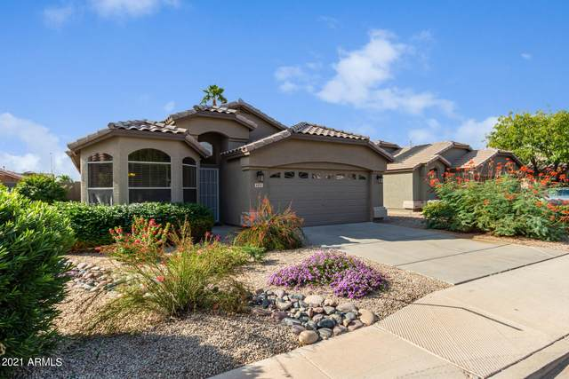 9323 E Pampa Avenue, Mesa, AZ 85212 (MLS #6307790) :: TIBBS Realty