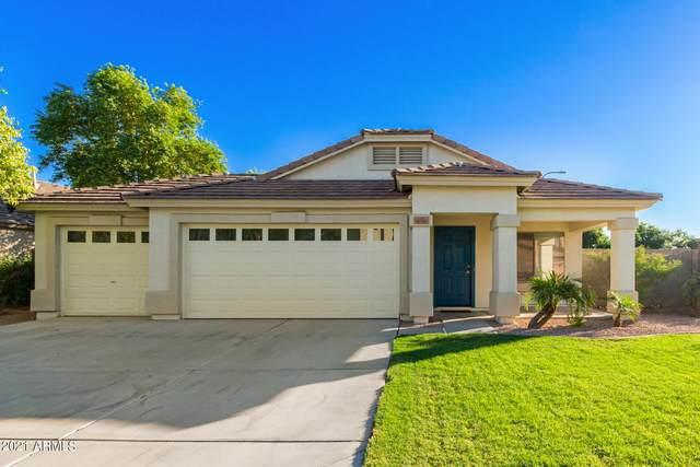 11233 W Locust Lane, Avondale, AZ 85323 (MLS #6307800) :: The Daniel Montez Real Estate Group