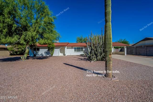 926 E Linda Avenue, Apache Junction, AZ 85119 (MLS #6307824) :: The Laughton Team
