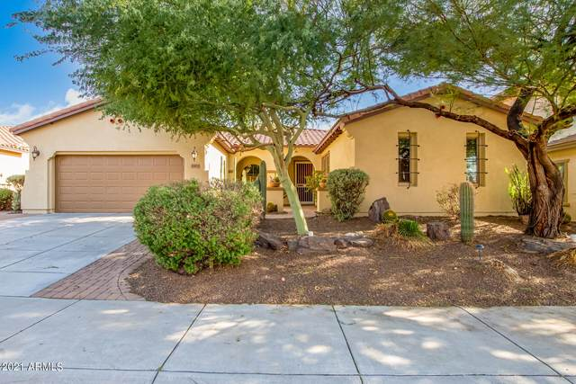 30473 N 123RD Lane, Peoria, AZ 85383 (MLS #6307825) :: The Property Partners at eXp Realty