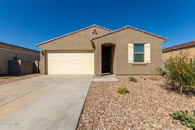 7012 E Gamebird Way, San Tan Valley, AZ 85143 (MLS #6307843) :: The Newman Team